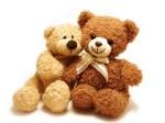 TeddyBear (3)